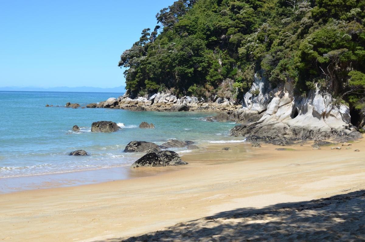 Van wandelen in Abel Tasman NP naar wijnproeven inMartinborough