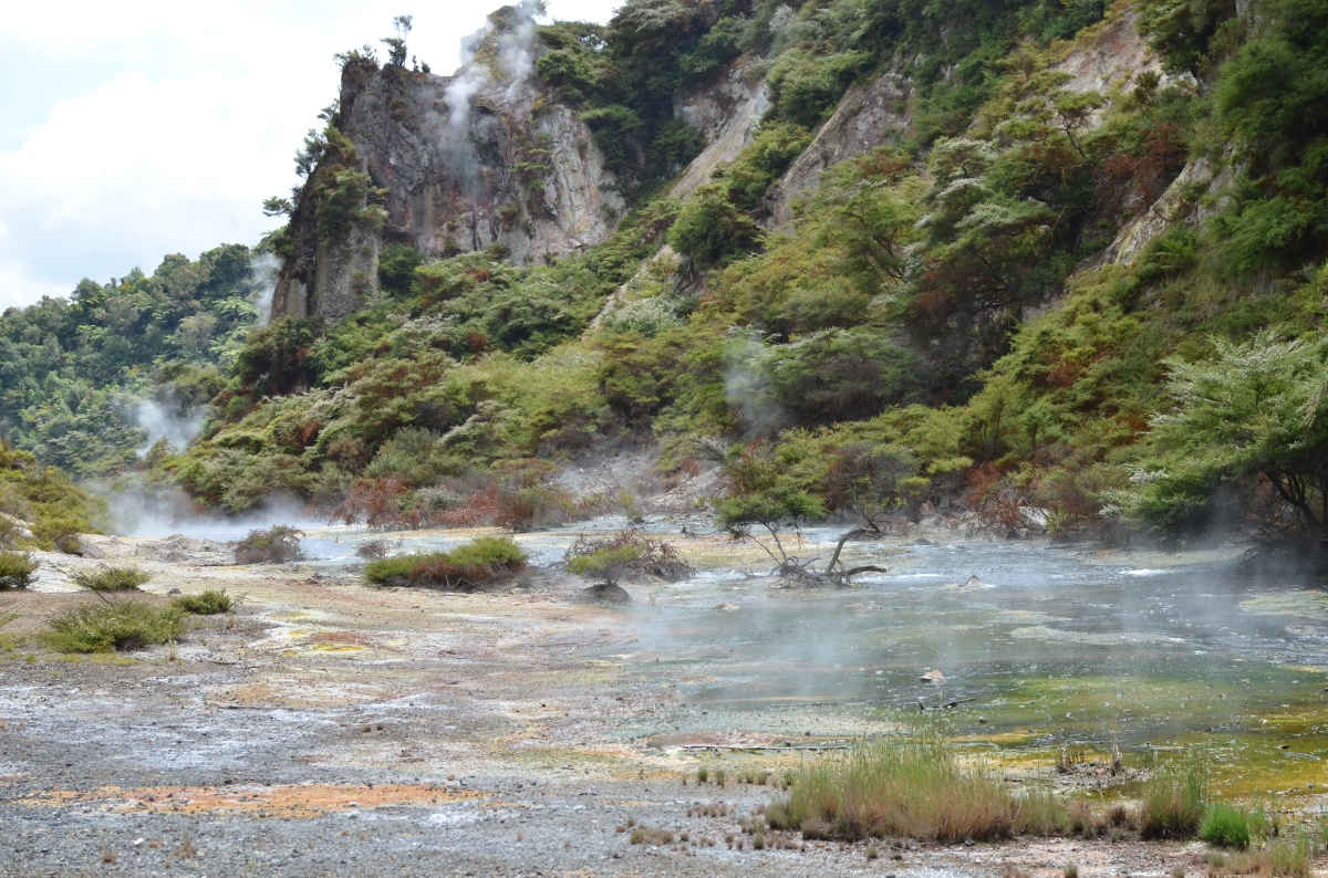 Vulkanen & grotten op hetNoordereiland